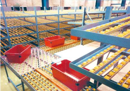 流利式货架,jbo竞博体育app流利式货架批发,泉州流利式货架价格
